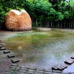 Image of watery backyard