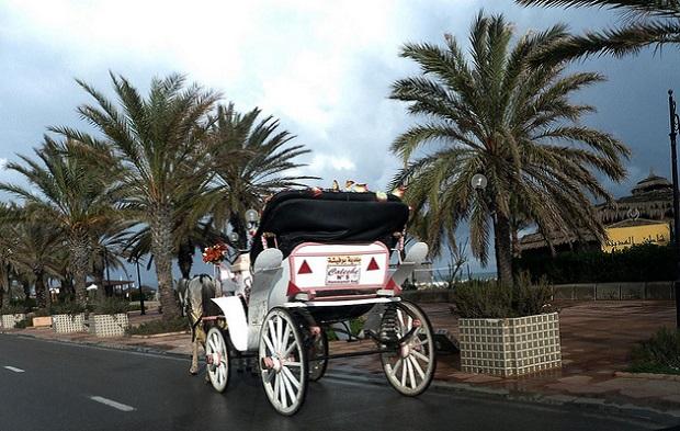 Flickr Rusty Clark Hammanet Tunisia 7051617759_3716b6f56b_z_620